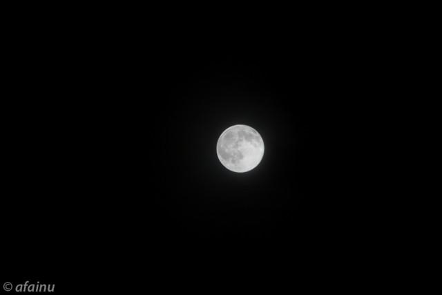十六夜満月