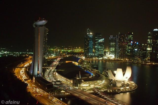 シンガポールの夜景を見下ろす