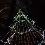 クリスマスツリー 2011