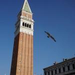サンマルコ広場を翔ぶ